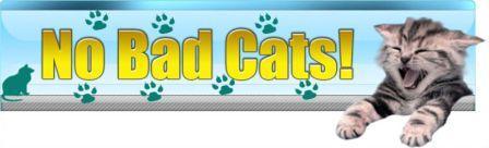 Bad Cats No More